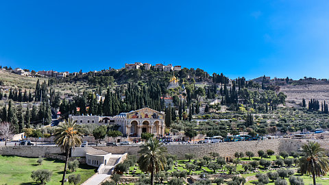 Oct. 30 - Mt. of Olives, Palm Sunday Road, Garden of Gethsemane, Bethlehem (Shepherds' Field)