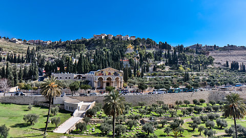 Aug. 30 –  Mt. of Olives, Garden of Gethsemane, Caiaphas' House, Upper Room